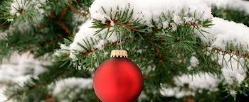 tl_files/Afbeeldingen/kerst_nieuw 2012.jpg